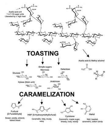 Figure 4: The Structure of a Hemicellulose Molecule and the Products Liberated During Toasting and Caramelization Processes