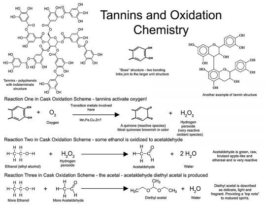 Figure 7: A schematic showing the involvement of tannins and oxidation chemistry occurring during wine and spirits aging